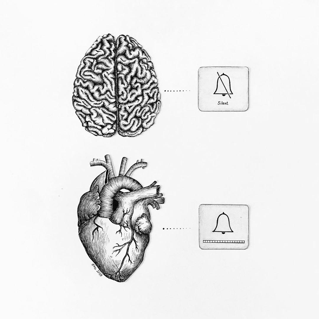 انتخاب میان عقل و احساس