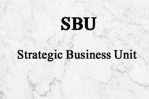 واحد کسب و کار استراتژیک