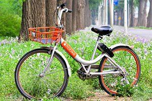 گورستان دوچرخه ها در چین