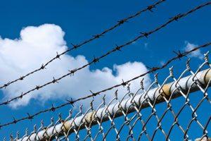 زندانی بدون دیوار - محمدرضا شعبانعلی