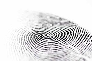 تعریف هویت برند چیست