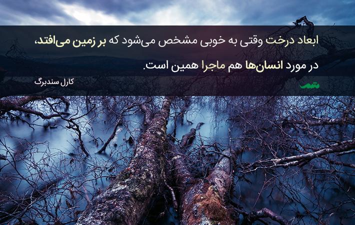ابعاد درخت وقتی به خوبی مشخص میشود که بر زمین می افتد در مورد انسانها هم ماجرا دقیقاً همین است کارل سندبرگ
