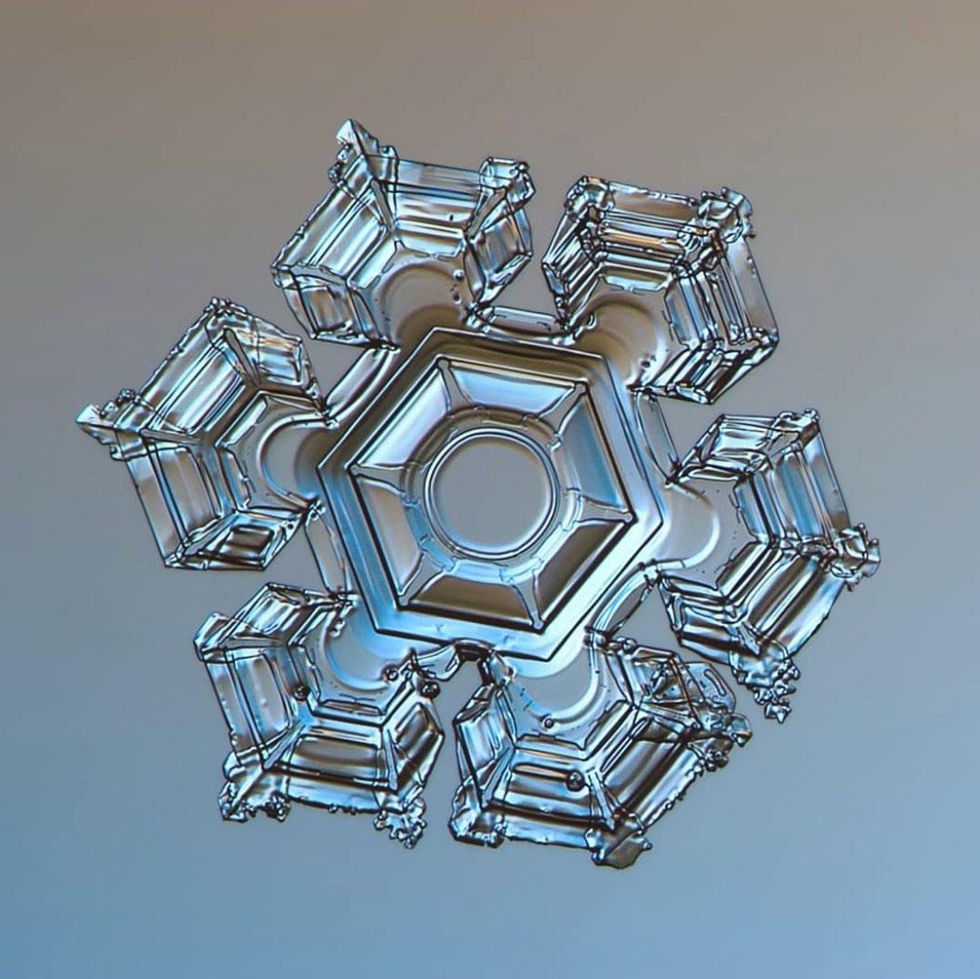 شکل دانه های برف