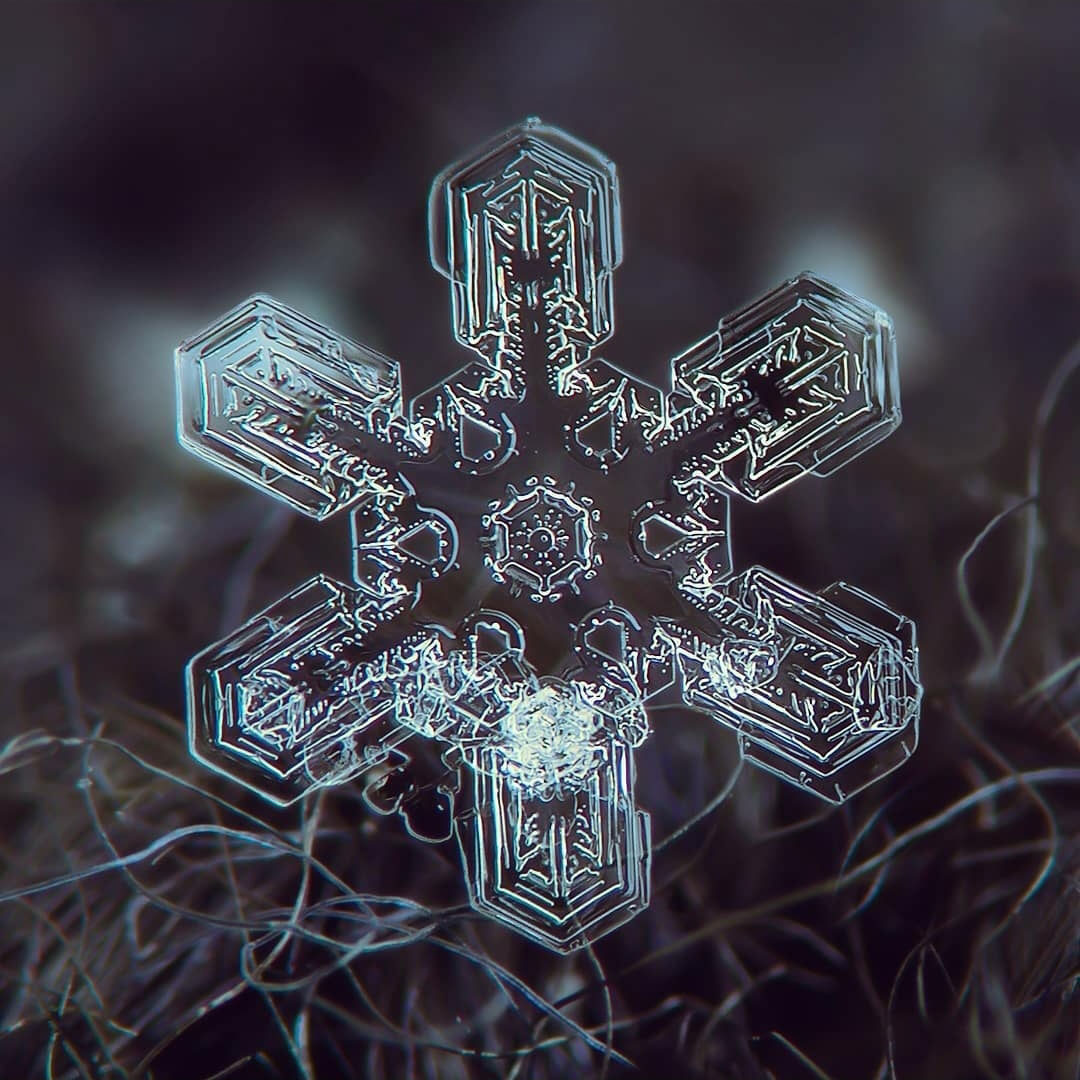 عکس دانه های برف