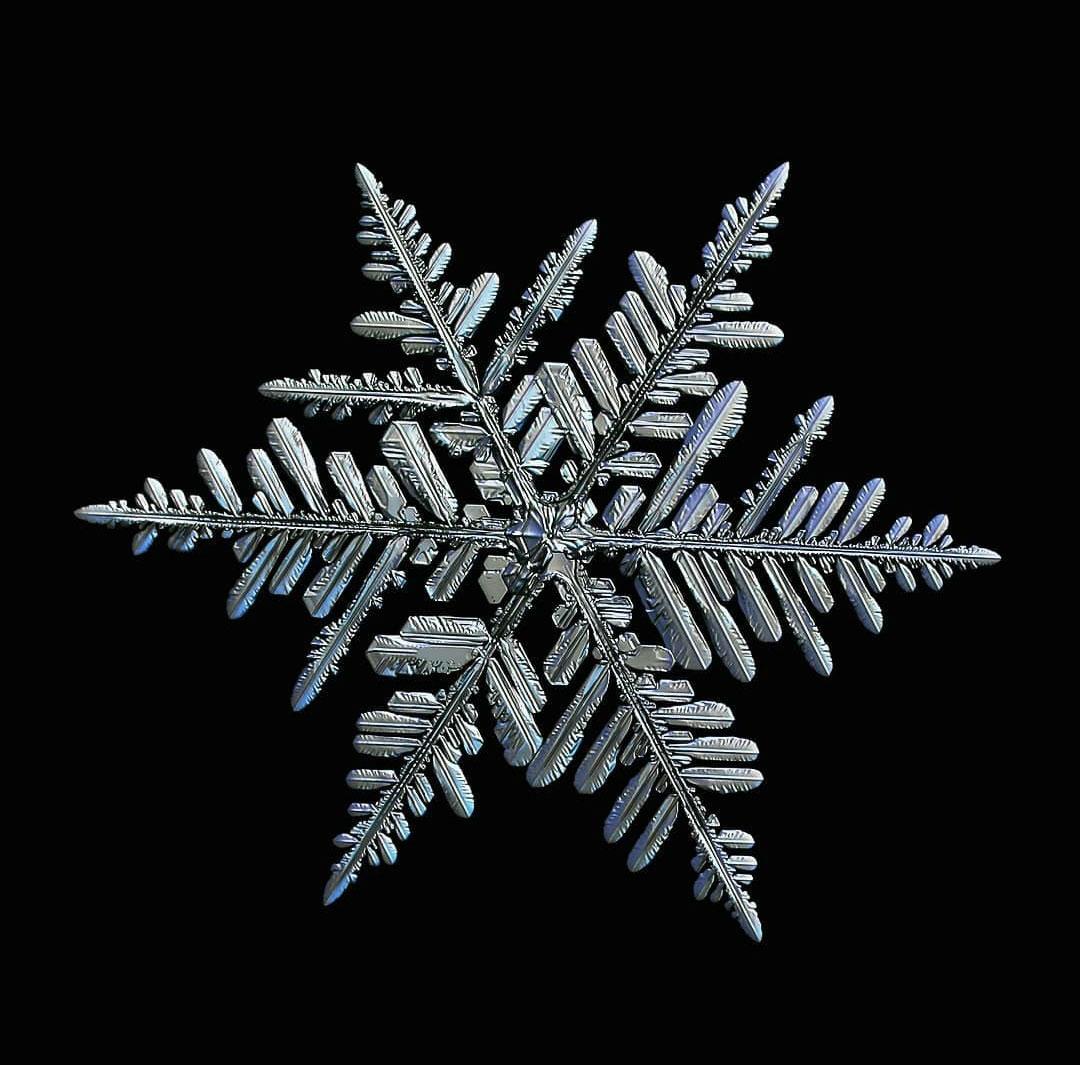 نقاشی دانه های برف