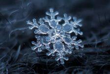 عکس دانه های برف | نگاهی نزدیک به شکل دانه برف