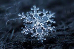 عکس دانه برف